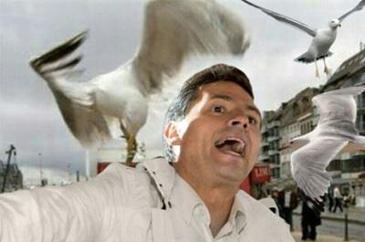 Índice Político: Cinco condiciones para evitar otro desastre como el que nos deja EPN