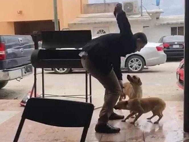 Identifican a sujeto que apuñaló y mató a perro en Piedras Negras