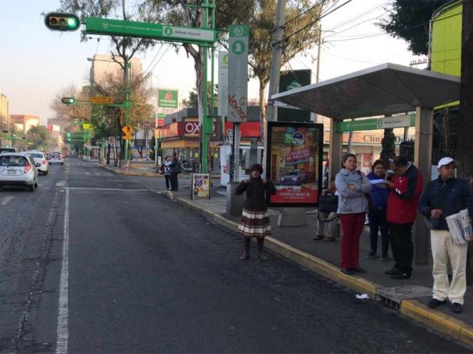 Cae rama en cables de trolebús en Eje Central, suspenden servicio