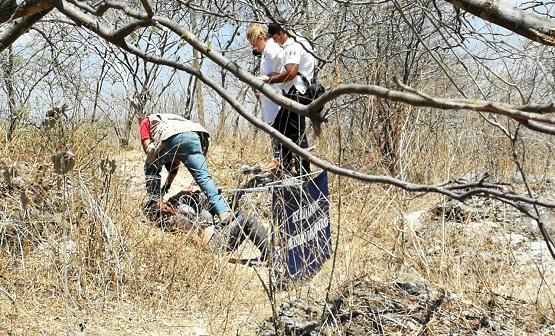 Ejecutan a dos hombres en la Tixtla-Apango; Semefo no acudió por falta de combustible