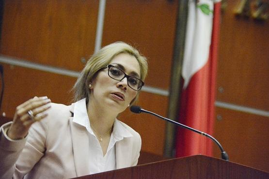 Erika Alcaraz Sosa, presidenta municipal de Tixtla, llamó a comisarios a estar preparados para enfrentar la temporada de incendios forestales