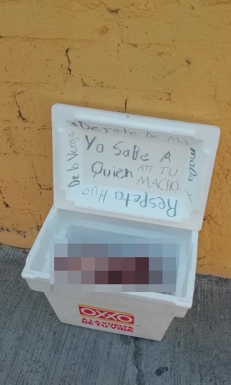 Dejan cabeza de vaca desollada con un narco mensaje, en Iguala