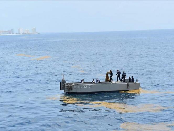 Por mar y aire realizan operativo para contener al sargazo