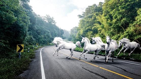 Los unicornios tecnológicos están listos para 'invadir' el mercado