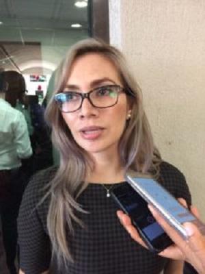 Presidenta municipal de Tixtla, rechazó que la muerte del brigadista Saúl Mier Deloya, haya sido su culpa