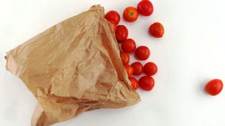 En riesgo, exportación de tomate mexicano hacia EU