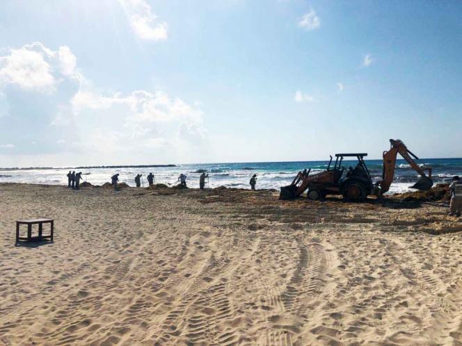 Denuncian retiro de sargazo en Cancún con maquinaria pesada