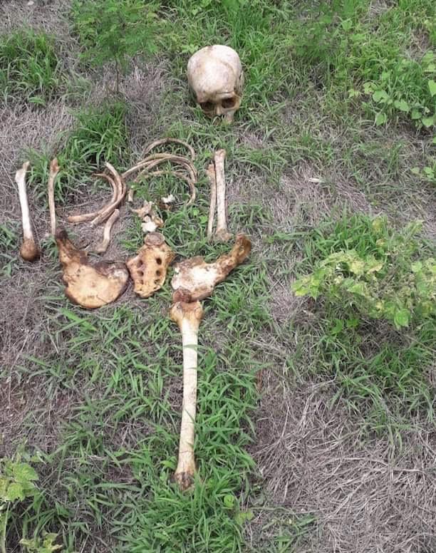 Localiza restos humanos en narco fosa de Acapulco