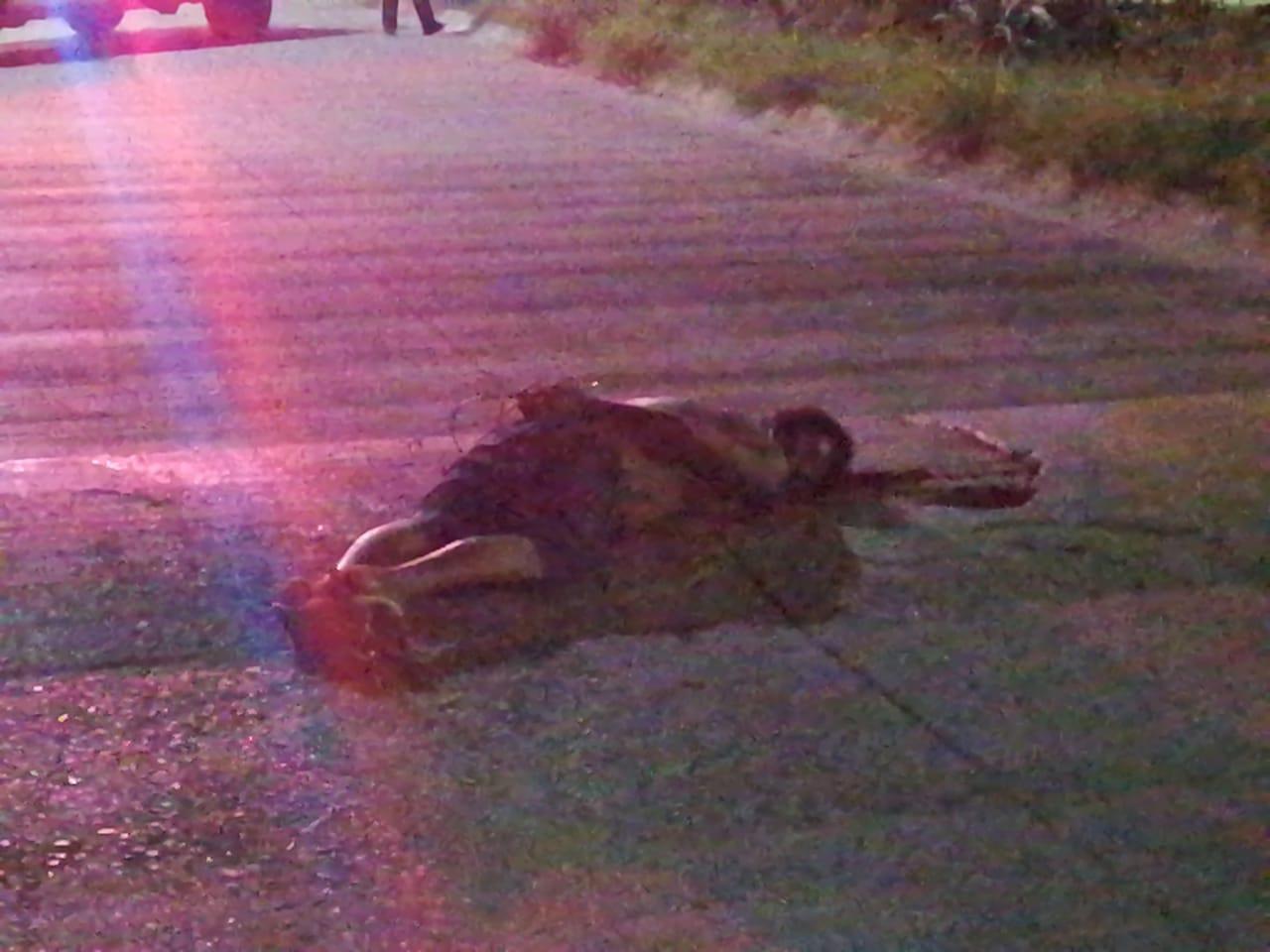 Degüellan a un hombre y abandonan su cuerpo con narco mensajes, en Acapulco