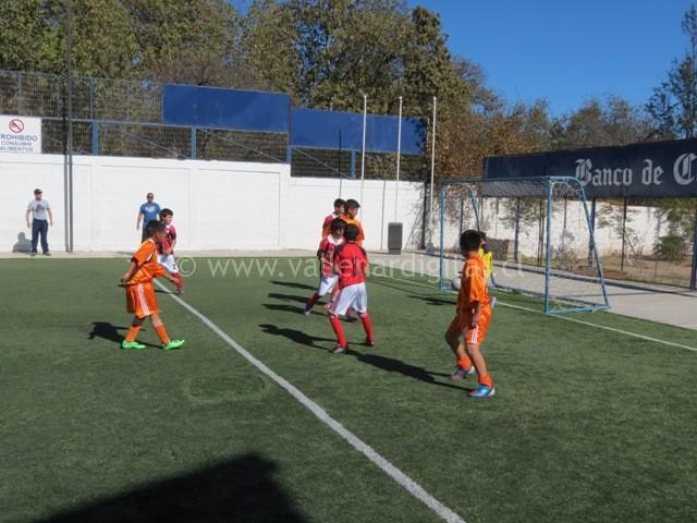 Campeonato Baby Fútbol en vacaciones (2)