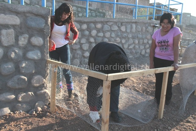 1er Huerto Comunitario en Vallenar (6)