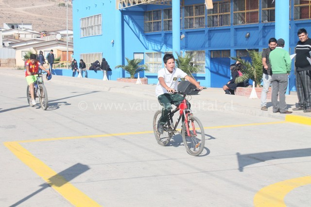 Bicicletada Barrio Vista Alegre (13)