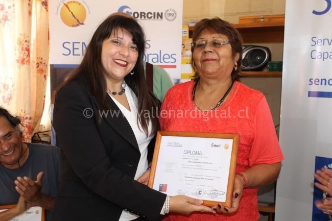 Certificación Gasfitería e Instalación de Gas en Copiapó (4)