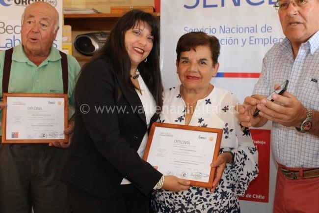 Certificación Gasfitería e Instalación de Gas en Copiapó (5)