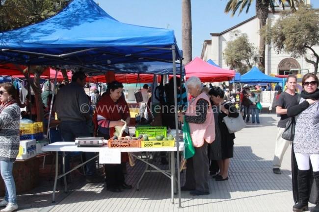 Encuentro Cultural entre Vallenar y Alto del Carmen (8)