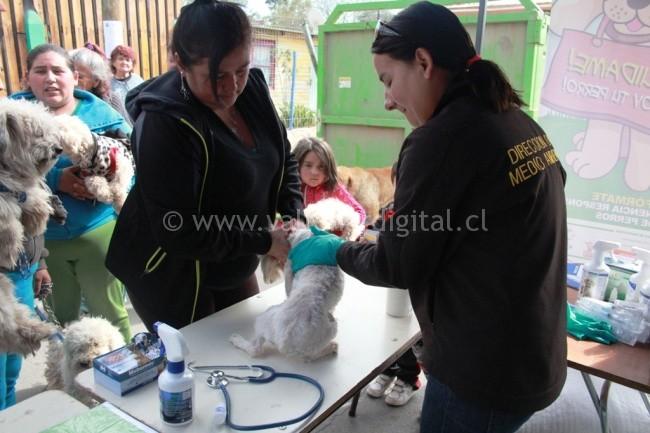 Operativo Ecológico Villa Cordillera  (2)