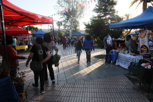 recreacion-de-la-fiesta-de-la-primavera-vallenar-2016-4