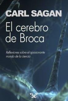 El Cerebro de Broca PDF