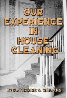 Our Experience in House-Cleaning PDF