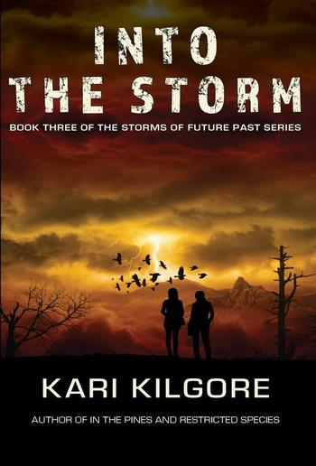 Into the Storm: Book Three of the Storms of Future Past Series PDF