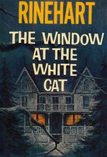 The Window at the White Cat PDF