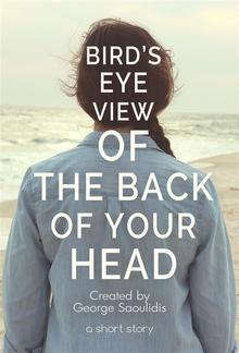 Bird's-Eye View of the Back of Your Head PDF