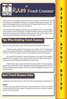 French Grammar ( Blokehead Easy Study Guide) PDF