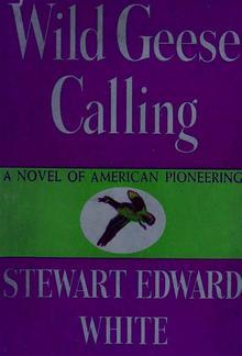 Wild Geese Calling PDF
