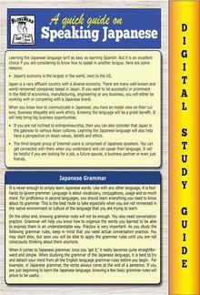 Japanese Grammar ( Blokehead Easy Study Guide) PDF