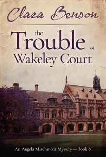 The Trouble at Wakeley Court PDF