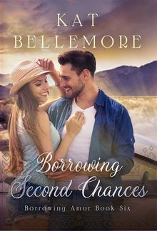Borrowing Second Chances PDF