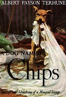 A Dog Named Chips: The Life and Adventures of a Mongrel Scamp PDF