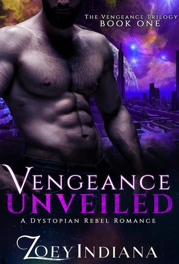 Vengeance Unveiled PDF