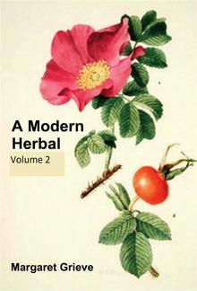 A Modern Herbal, Volume 2 PDF