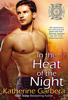 In the Heat of the Night (Book #2 in O'Roarkes series) PDF