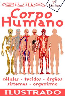 Guia 36 - Corpo Humano PDF