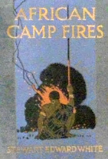 African Camp Fires PDF