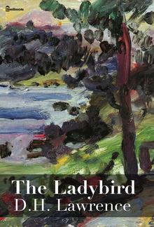 The Ladybird PDF