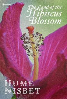The Land of the Hibiscus Blossom PDF