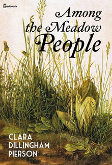 Among the Meadow People PDF