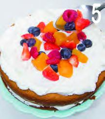 Torta al latte con panna e frutta fresca