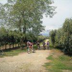 Campionato di Cross Country: in Calabria si pedala tra gli ulivi