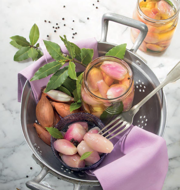 Scalogni sottaceto ricetta