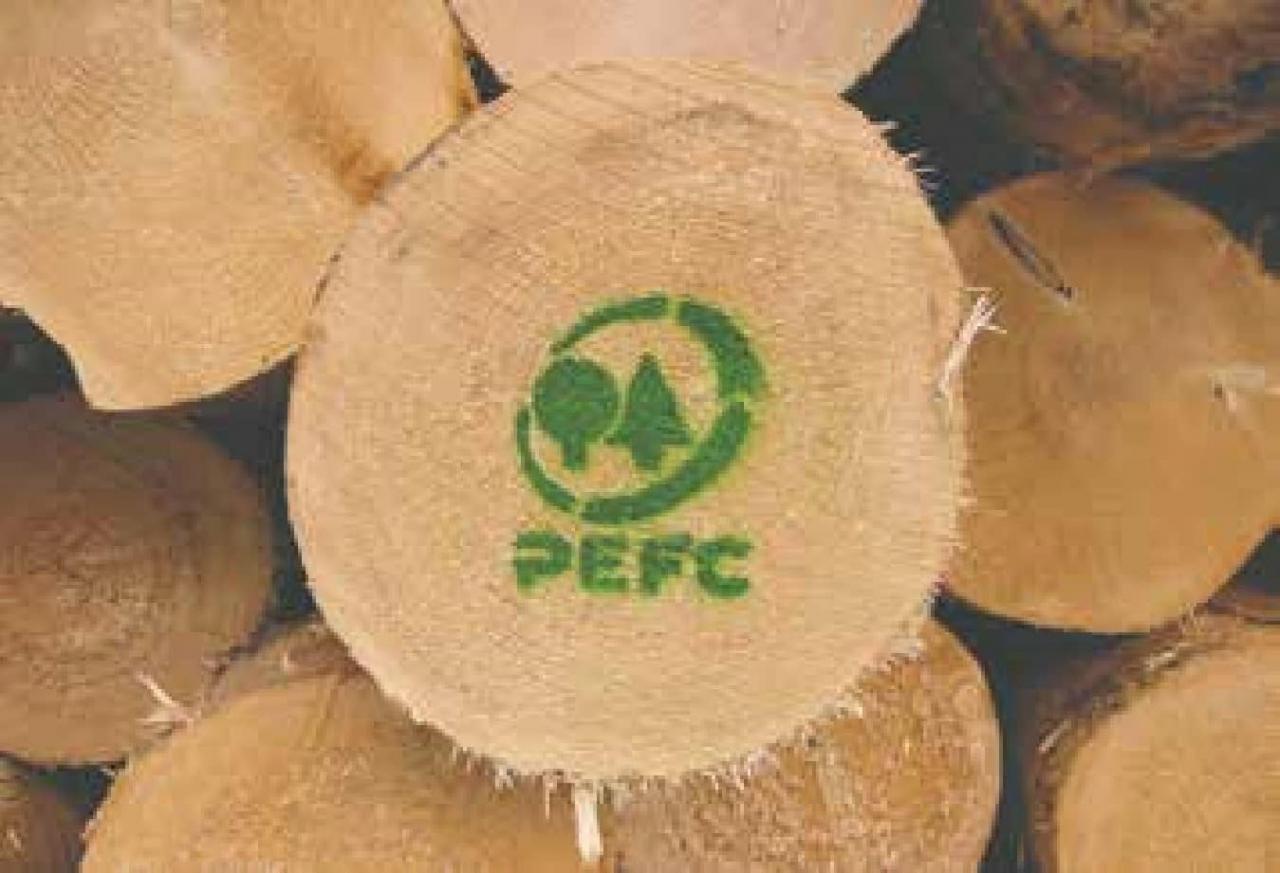 Il marchio PEFC, per raccogliere legno in modo sicuro