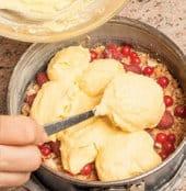 Cheesecake con ricotta di pecora, lamponi e ribes