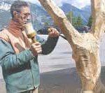 Luca Germena, l'artista di Avigliano che fa rivivere il legno