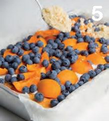 Torta con albicocche, mirtilli e crumble di zucchero