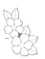 Basiscursus bloem..