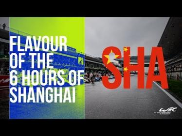 2018 World Endurance Championship in Chinese Flavour