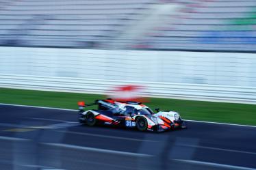 #31 TEAM WRT / BEL / Oreca 07 - Gibson - 8 hours of Portimao - Autodromo Internacional do Algarve - Portimao - Portugal -